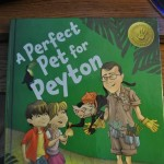 A Perfect Pet for Peyton by Gary Chapman