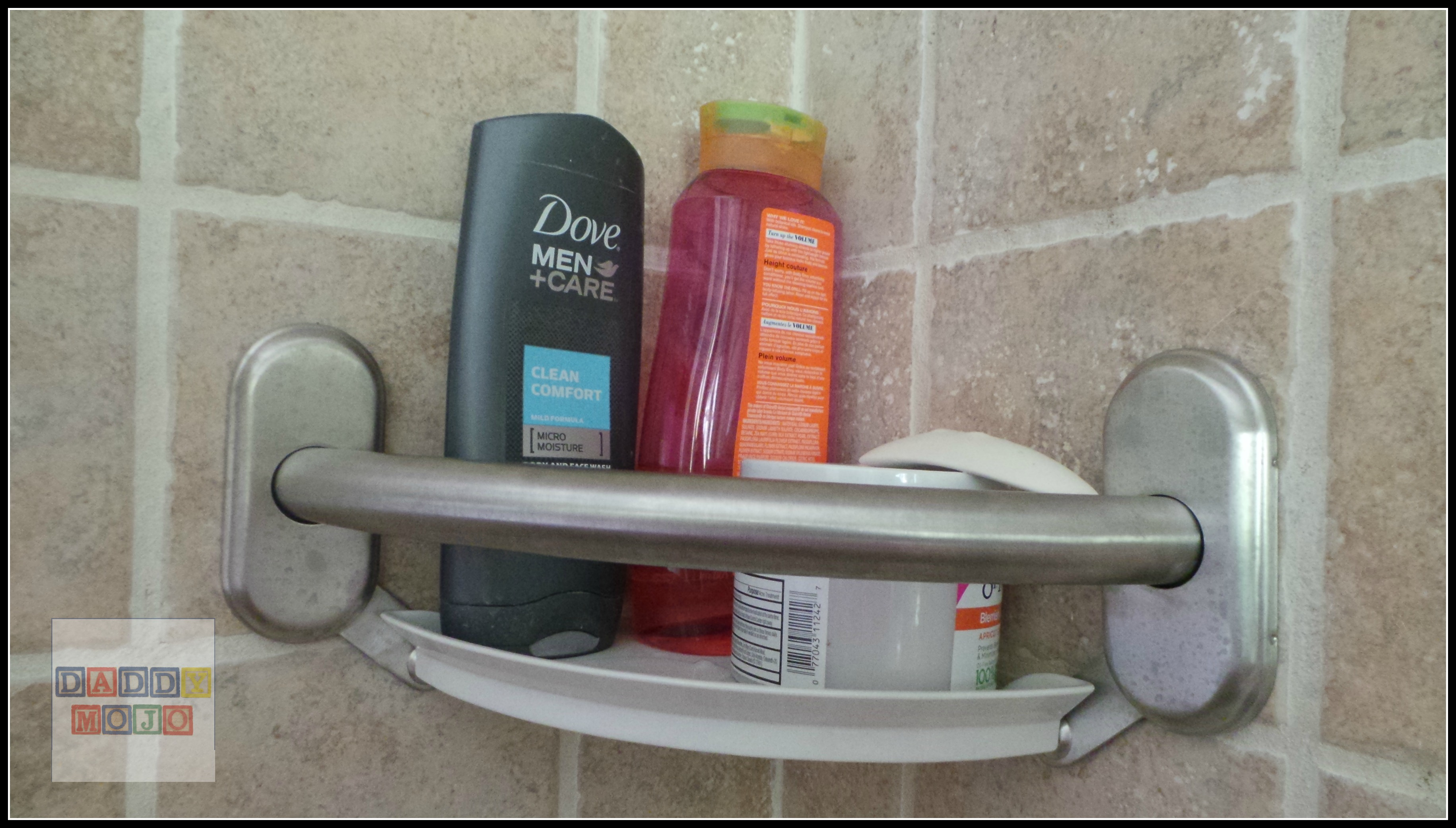 Moen Corner Shelf And Grab Bar