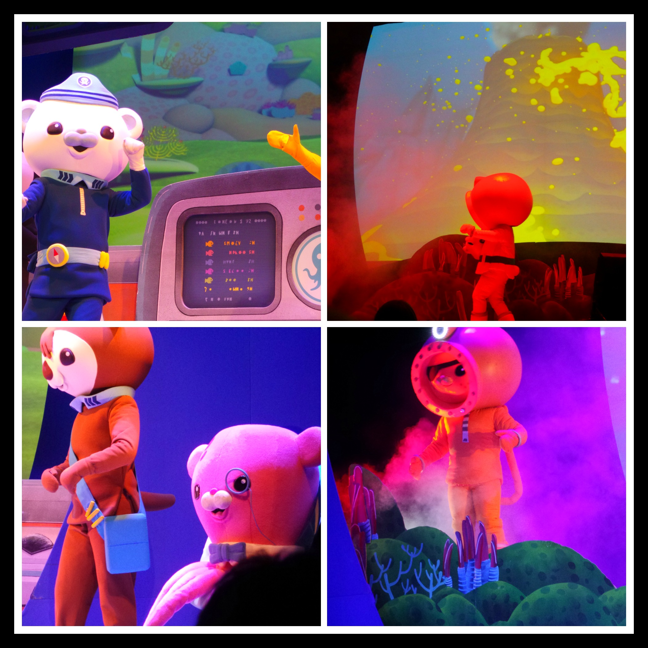 octonauts live review cadets under 8 will love it 3 daddy mojo