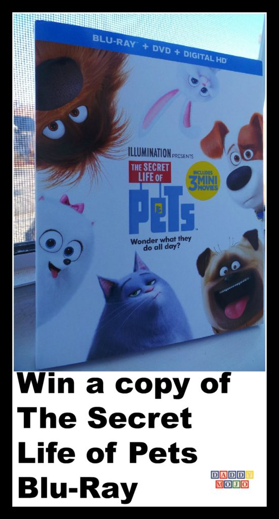 Win a copy of The Secret Life of Pets Blu-Ray, pets movie, pets