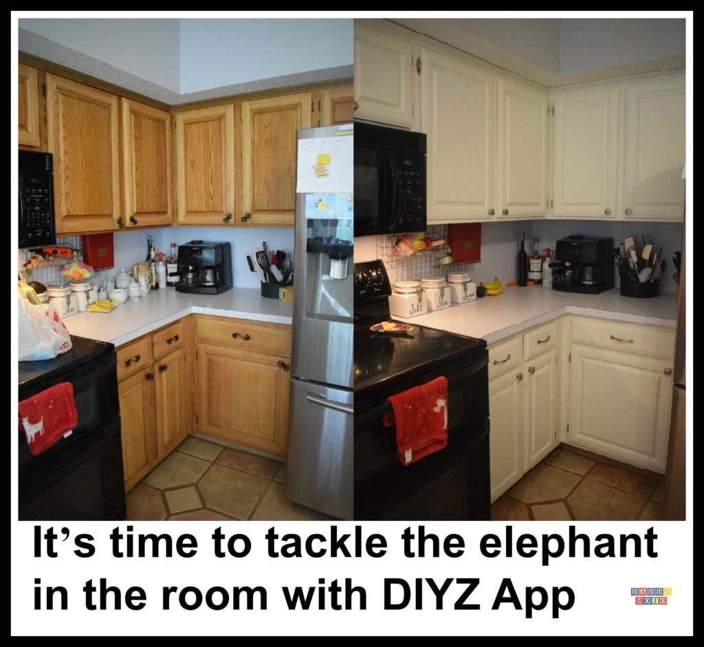 It S Time To Tackle The Elephant In The Room With Diyz App